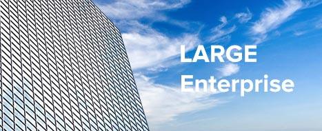 Case-Studies-Large-Enterprise